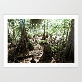 Florida Art Print