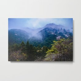 Japanese forest 2 Metal Print