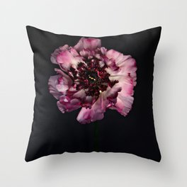 Dutch Floral 3 (Japanese Ranuncula) Throw Pillow