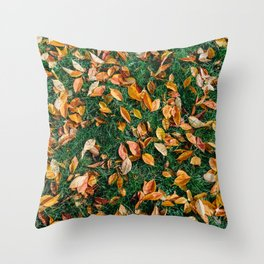 Red And Orange Autumn Leaves Background In Fall Season, Autumn Season, Fall Background, Falling Leaf Throw Pillow