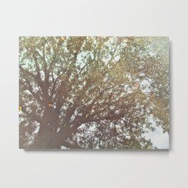 Reverie of a Tree Metal Print