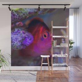 Drag queen fish Wall Mural
