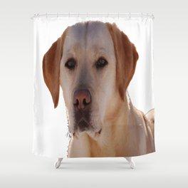 Portrait of A Golden Labrador Dog Shower Curtain