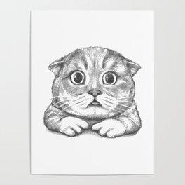 British Shorthair Cat hand drawn Poster