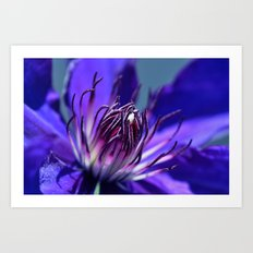 The Richness of Color Art Print