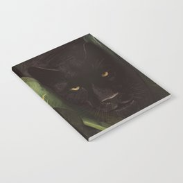 Hello Panther! Notebook