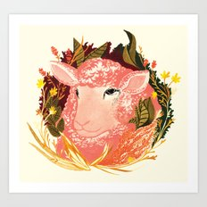 Field Sheep Art Print