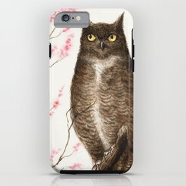 Spring Owl iPhone Case