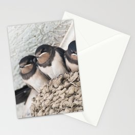 Swallow nestlings sitting in nest Stationery Cards