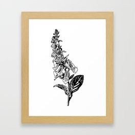 wild flower: digitalis purpurea Framed Art Print