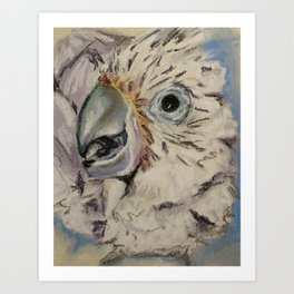 """Food Thanks"" Cockatoo Chick Art Print"