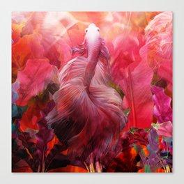 """Betta splendens Tropical Dream (Siam fighter)"" Canvas Print"