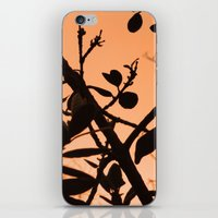 positive iPhone & iPod Skins featuring Positive by AlexinaRose