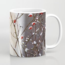 Snow covered fruits of Eglantine rose (Rosa rubiginosa). Coffee Mug