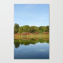 Trees and plants reflected in water Canvas Print