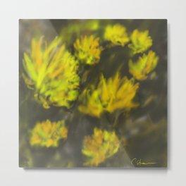 Dandelions DP151006d Metal Print