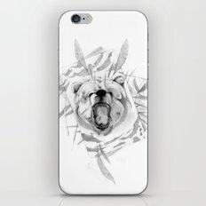 B34R (Bear) iPhone & iPod Skin