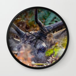 Hiding. Wall Clock