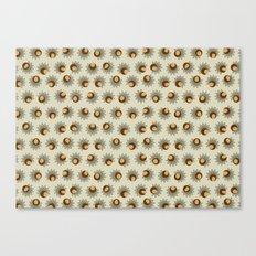 Sprouting Quinoa Canvas Print