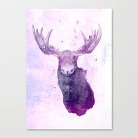 springsteen Canvas Prints featuring Moose Springsteen by Lucy Evans