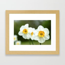 spring_2 Framed Art Print