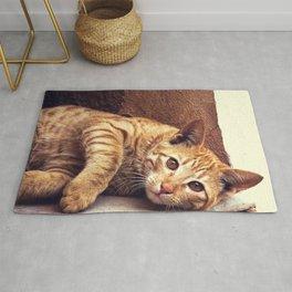 Cat roux Rug
