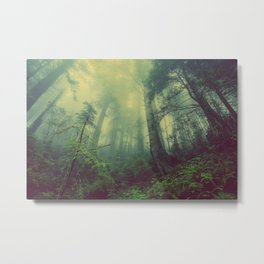 Forest and Fog 01 Metal Print