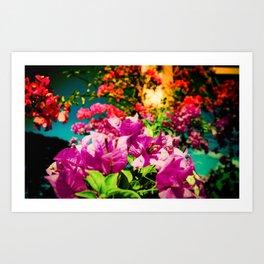 Flowerers Art Print