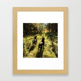 Tennis Ball Season Framed Art Print