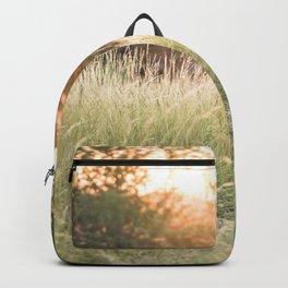 Hazy sunshine Backpack