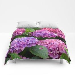 Pink & Purple Flowers Comforters