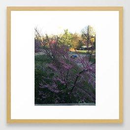 Afternoon in Central Park Framed Art Print