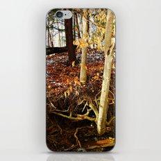 Can You Hear The Echo...? iPhone & iPod Skin