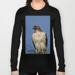 Red-Tailed Hawk on Watch at Foothill and B Street Long Sleeve T-shirt