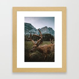Deer in Yosemite Valley Framed Art Print