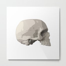 Graphic Skull Metal Print
