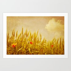 Cornfield in July Art Print