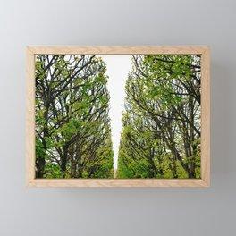 Paris Garden VI Framed Mini Art Print