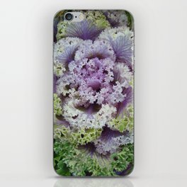 Little Cabbage iPhone Skin