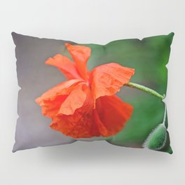 Red Punch Pillow Sham