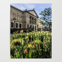 Unopened tulips by Chicago's Art Institute one spring morning Poster