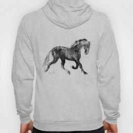 Horse (Friesian Colt) Hoody