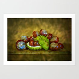 Conker Season Art Print