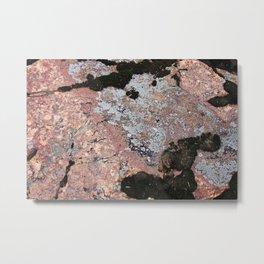Moss Rock Metal Print