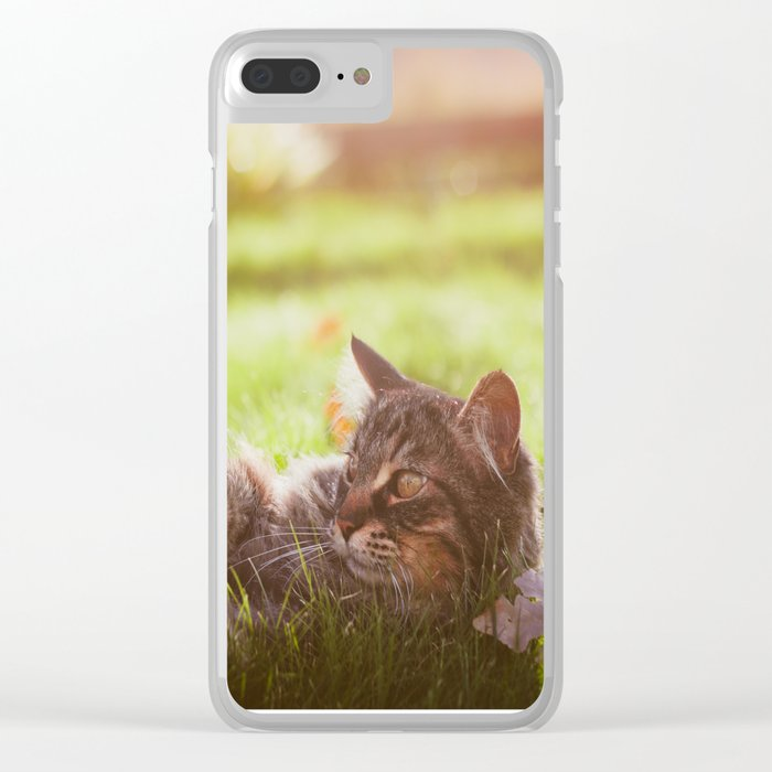 Love in the Sunshine Clear iPhone Case