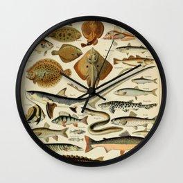 Fish Chart Wall Clock