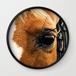 a horse's kind eyes. Wall Clock