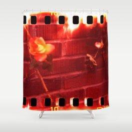 holga film x-processed, roses with brick Shower Curtain