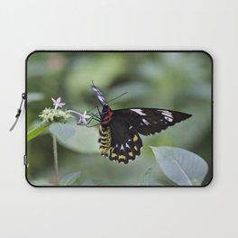 Female Birdwing Butterfly Laptop Sleeve