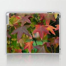 Maple Shapes Laptop & iPad Skin